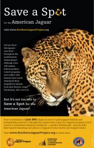 Save a Spot Poster